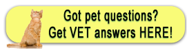 Dr. Jen's Veterinary House Call Practice Client Education Library from VIN